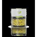 Zelené olivy - plátky 1,56 kg